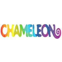 Яркие выходные вместе с Chameleon на фестивале Stereoleto - Новости радио OnAir.ru